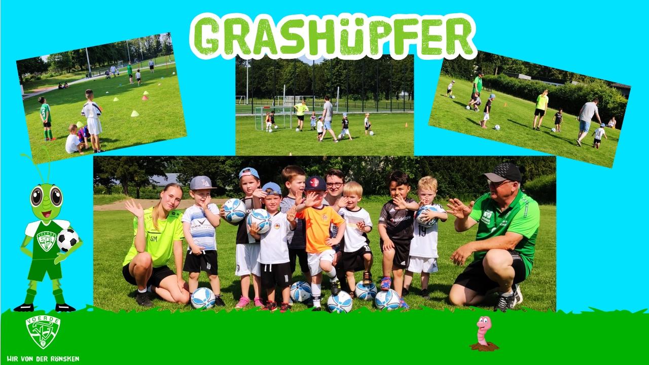 Grashüpfer_Team_Bild